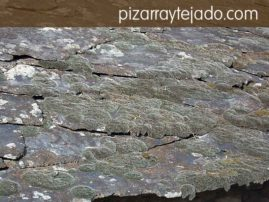 Limpieza de musgo y suciedad en tejados y cubiertas de pizarra natural. Tratamiento de la pizarra anti musgo.